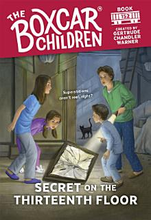 Secret on the Thirteenth Floor Book