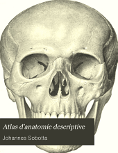 Atlas d'anatomie descriptive: Volume1,Numéro1