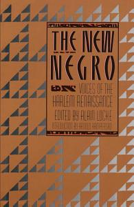 The New Negro Book
