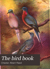 The Bird Book: Illustrating in Natural Colors More Than Seven Hundred North American Birds, Also Several Hundred Photographs of Their Nests and Eggs