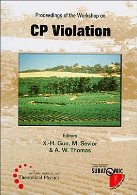 Cp Violation   Proceedings Of The Workshop PDF