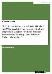 """""""Ich bin ein Knabe: ich will kein Mädchen sein!"""" Ein Vergleich der Geschlechtlichkeit Mignons in Goethes """"Wilhelm Meisters theatralische Sendung"""" und """"Wilhelm Meisters Lehrjahre"""""""