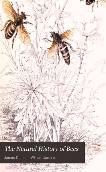 The Natural History of Bees