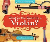 What in the World Is a Violin?