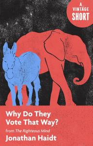 Why Do They Vote That Way? Book