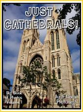 Just Cathedrals! vol. 1: Big Book of Photographs & Church Cathedral Pictures