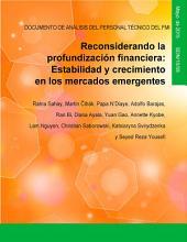 Reconsiderando la profundización financiera: Estabilidad y crecimiento en los mercados emergentes