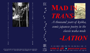 Mad In Translation Book PDF