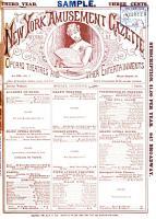New York Amusement Gazette PDF