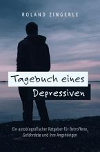 Tagebuch eines Depressiven PDF
