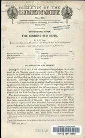 The verbena bud moth