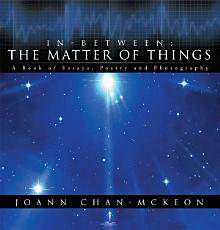 In Between  the Matter of Things PDF