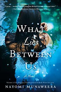 What Lies Between Us Book