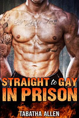 Straight to Gay in Prison  Straight Men Turned Gay  PDF