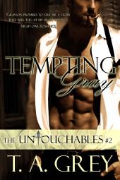 Tempting Gray: The Untouchables, #2