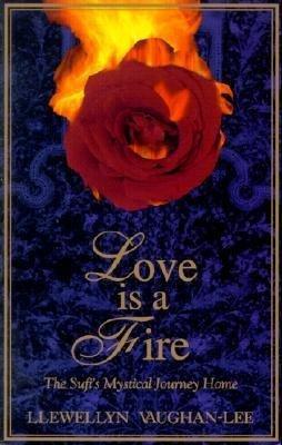 Love is a Fire