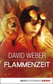 Flammenzeit: Roman