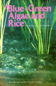 Blue-green Algae and Rice