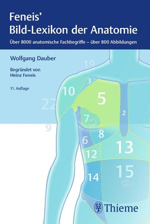 Bild Lexikon der Anatomie PDF