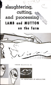 Slaughtering, cutting, and processing lamb and mutton on the farm