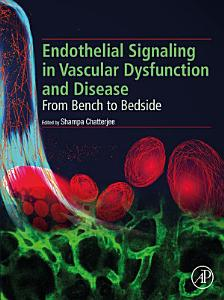Endothelial Signaling in Vascular Dysfunction and Disease