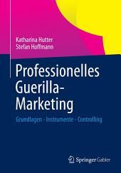 Professionelles Guerilla-Marketing: Grundlagen - Instrumente - Controlling