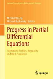 Progress in Partial Differential Equations: Asymptotic Profiles, Regularity and Well-Posedness
