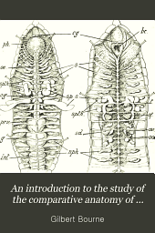 An introduction to the study of the comparative anatomy of animals: Volume 2