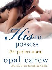 His to Possess #3: Perfect Storm
