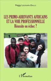 Les primo-arrivants africains et la voie professionnelle: Réussite ou échec ?