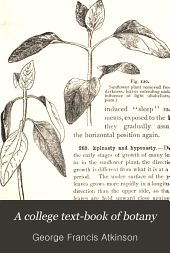 "A College Text-book of Botany: Being an Enlargement of the Author's ""Elementary Botany,"""