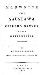 Mluwnice čili saustawa českeho gazyka podle Dobrowskeho
