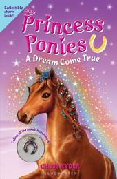 Princess Ponies 2: A Dream Come True