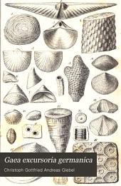 Gaea excursoria germanica: Deutschlands Geologie, Geognosie und Paläontologie als unentbehrlicher Leitfaden auf Excursionen und beim Selbststudium, Band 1