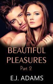Beautiful Pleasures Book 2: A Billionaire Romance