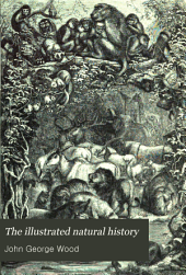 The Illustrated Natural History: Volume 2