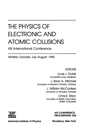 The Physics of Electronic and Atomic Collisions PDF
