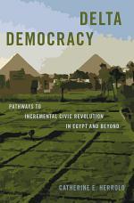 Delta Democracy