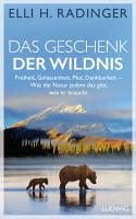 Das Geschenk der Wildnis PDF