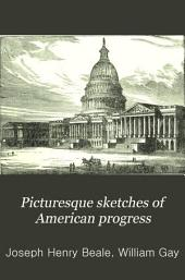Picturesque Sketches of American Progress