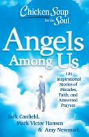 Chicken Soup for the Soul  Angels Among Us PDF