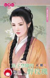 浪子禁臠的野玫瑰~冤家鬥冤家之十《限》: 禾馬文化紅櫻桃系列362