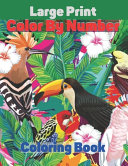 Large Print Color By Number Coloring Book