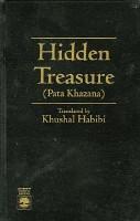 The Hidden Treasure PDF