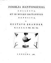 Fossilia hantoniensia collecta, et in Musæo britannico deposita