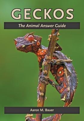Geckos PDF