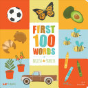 First 100 Words in English and Spanish PDF