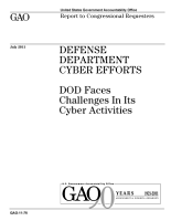 Defense Department Cyber Efforts  DoD Faces Challenges in Its Cyber Activities PDF