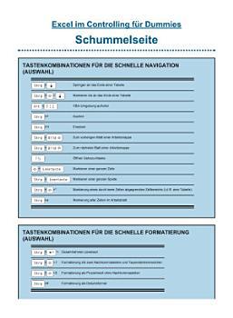 Excel im Controlling f  r Dummies PDF