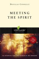 Meeting the Spirit PDF